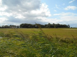 Swingolf_Norddeich_03