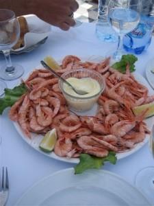 Essouria_Shrimps