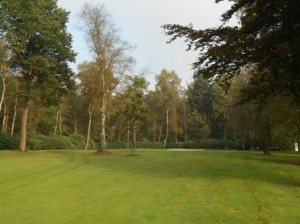Wiesmoor_Golf_016