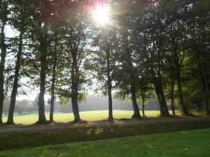 Wiesmoor_Golf_026