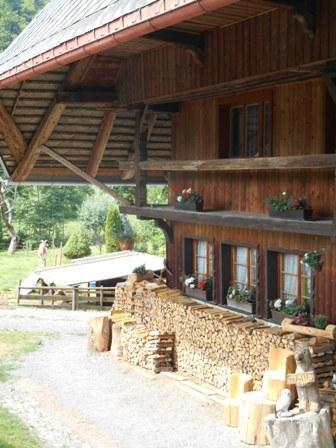 Schwarzwald_10
