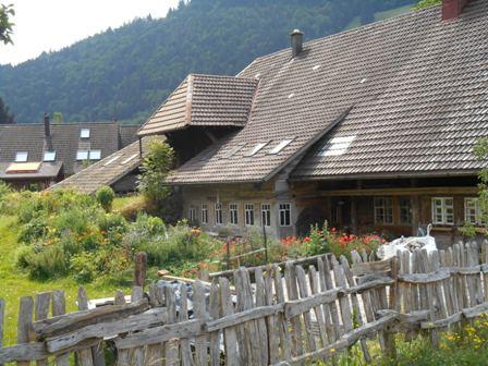 Schwarzwald_11